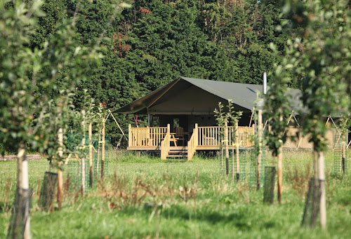 Wild Luxury - The Norfolk Glamping Company at Wild Luxury - The Norfolk Glamping Company