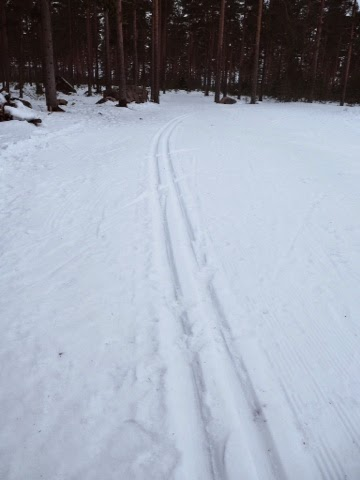 lumi, snow, talvi, winter, lumilatu, hiihtolatu, skiing, ski,