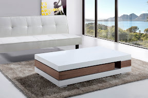 furniture online for sale sofa and coffee table