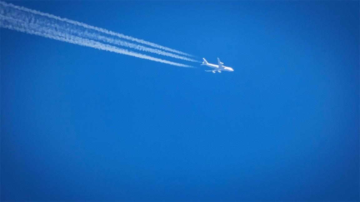 Dinner Flight.jpg