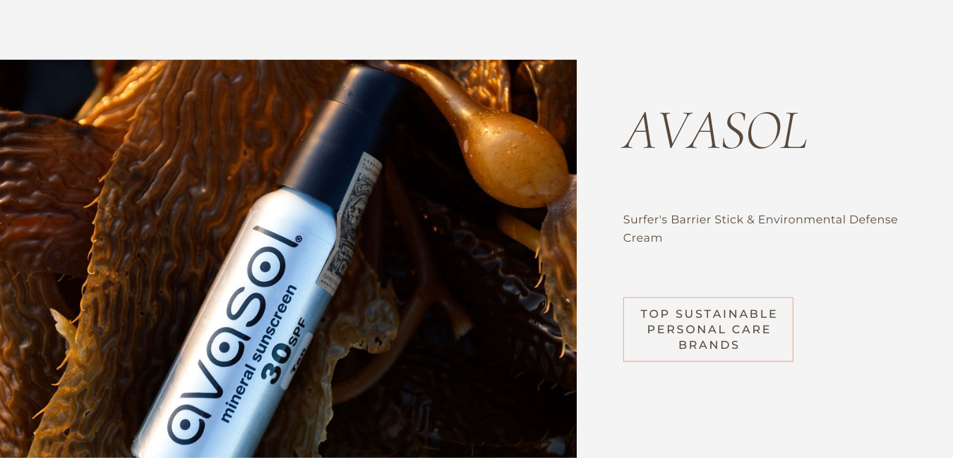 embrace sustainable living with avasol