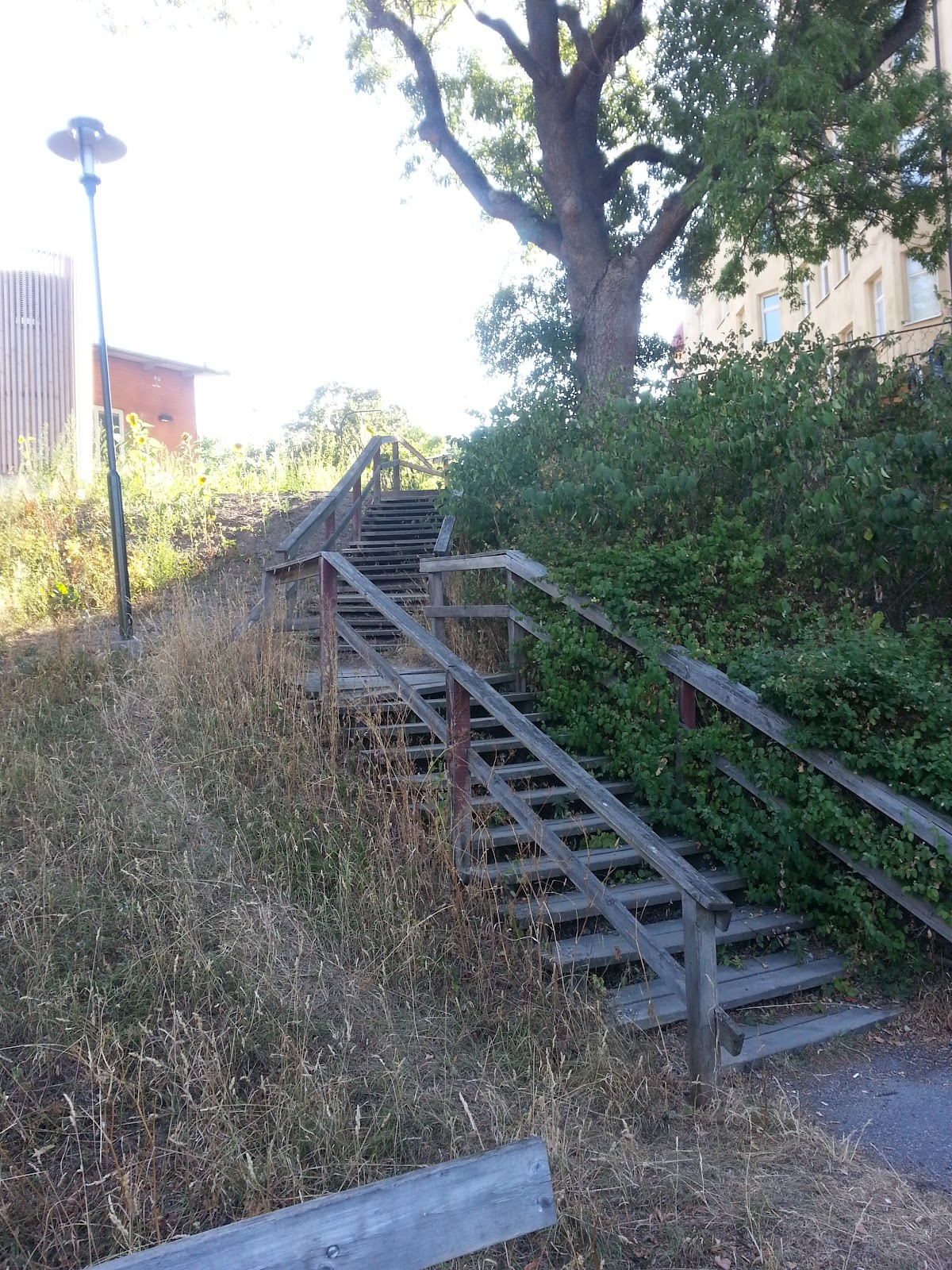 Image shows the stairs on the 'blue path' going up