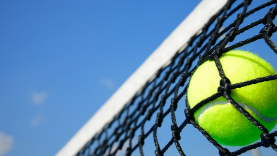 tennis ball in a net