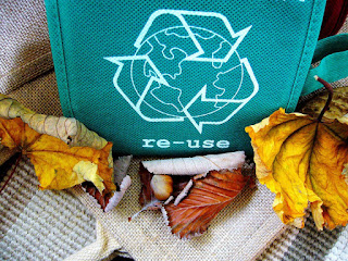 reusable bag to reduce environmental impact