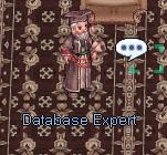 db expert.png