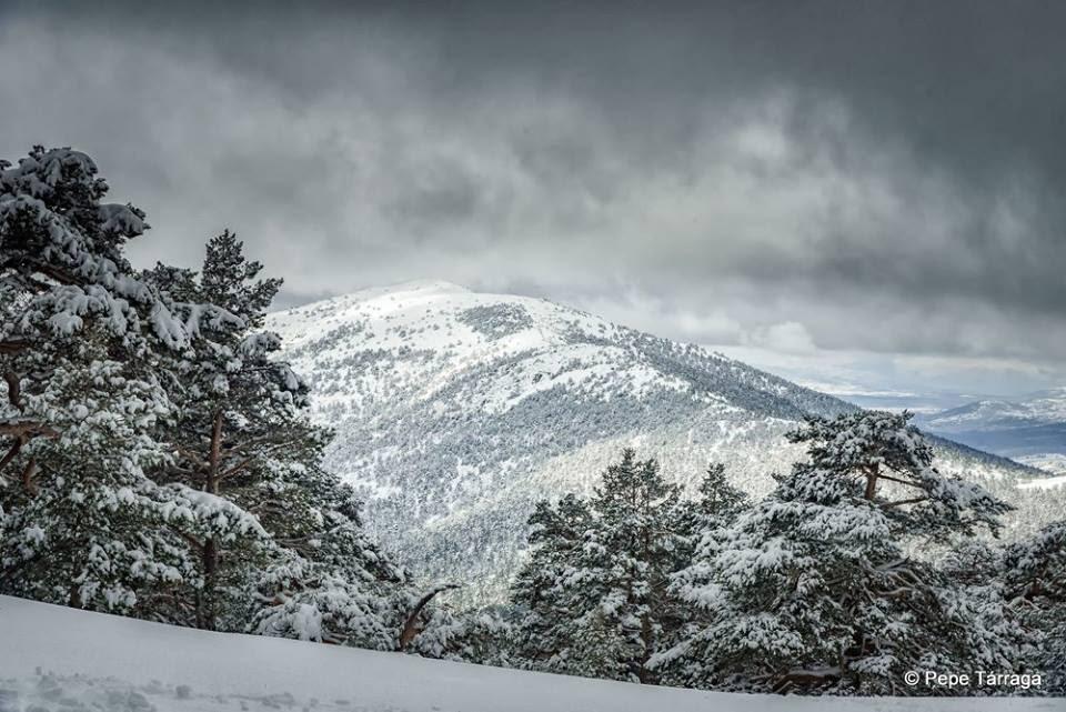 La imagen puede contener: cielo, nubes, árbol, nieve, montaña, exterior y naturaleza