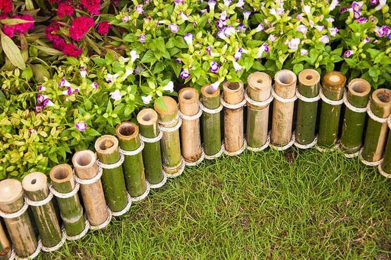 Mini Bamboo Garden Fence