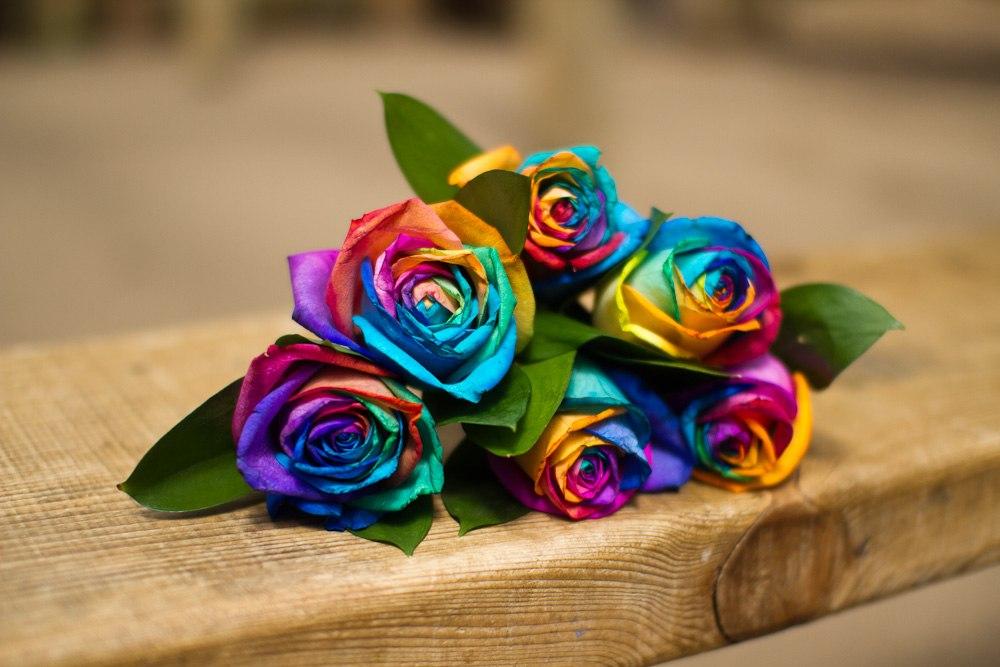 Королева цветов: всегда прекрасна, везде уместна