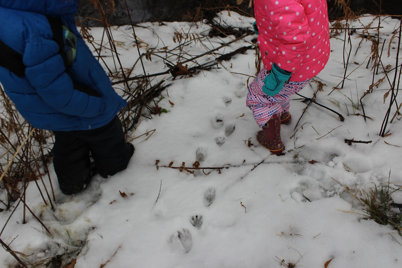 Two small children tracking animals in snow.