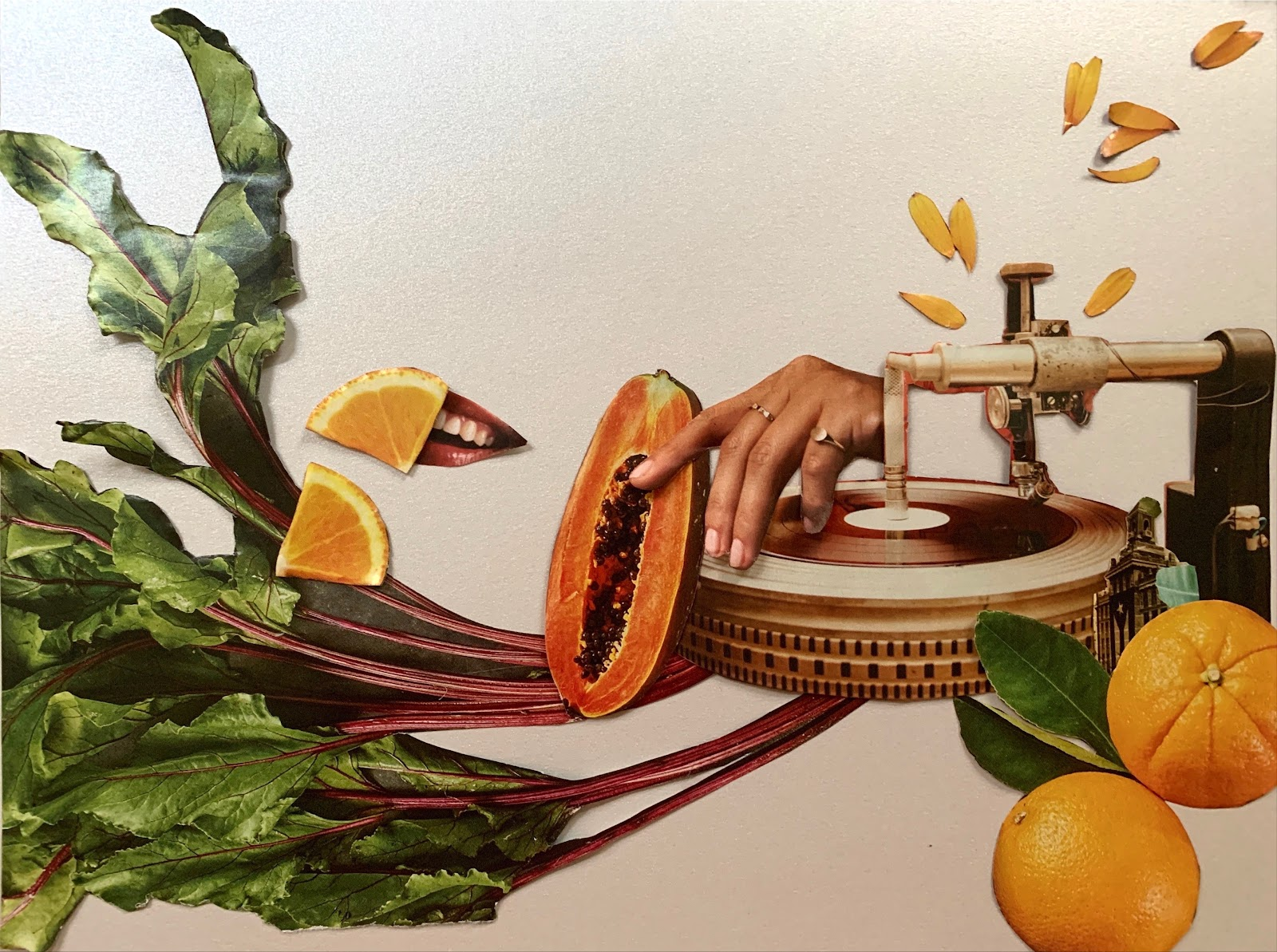 Collage image of rhubarb plants and fruit with image of a hand and record turntable.
