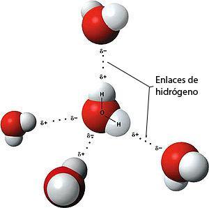 C:\Users\anarella\Documents\2015\2 Portal Uruguay Educa\dibujos libres\Moleculah20.jpg