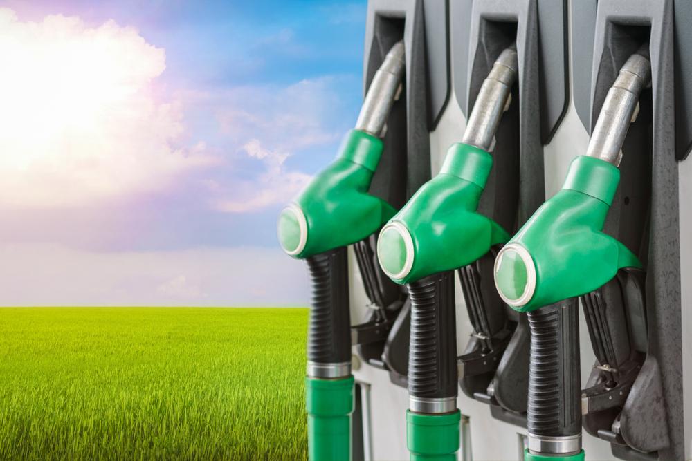 Produtores familiares de biocombustível ganham reforço com o selo. (Fonte: Shutterstock)