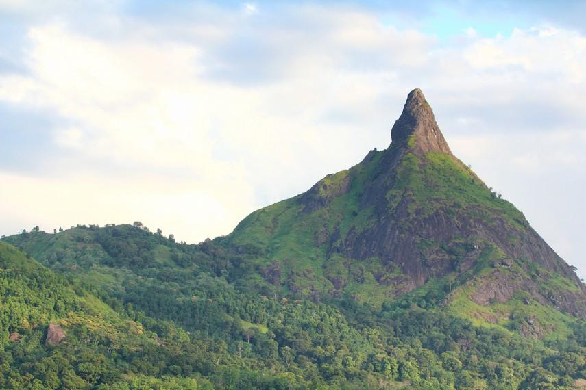 https://www.indonesiakaya.com/uploads/_images_gallery/2__IMG_0095_edit_Bukit_Jempol_mempunyai_nama_peta_Bukit_Serelo,_bukit_ini_berlokasi_di_Desa_Perangai_yang_berjarak_sekitar_20_km_dari_pusat_Kota_Lahat.jpg