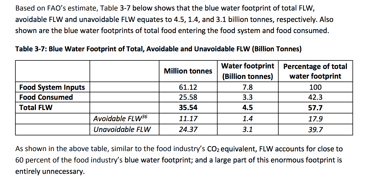 Second Harvest's Avoidable Crisis of Food Waste and water use