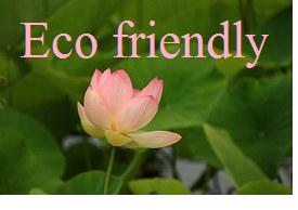 eco friendly logo (1).png