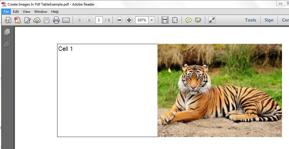 Программа из pdf таблицы