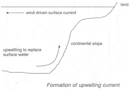 http://www.microbiologyprocedure.com/microbial-ecology-of-different-ecosystems/images/upwelling-current.jpg