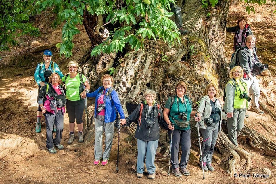 La imagen puede contener: 6 personas, personas sonriendo, personas de pie, árbol, exterior y naturaleza