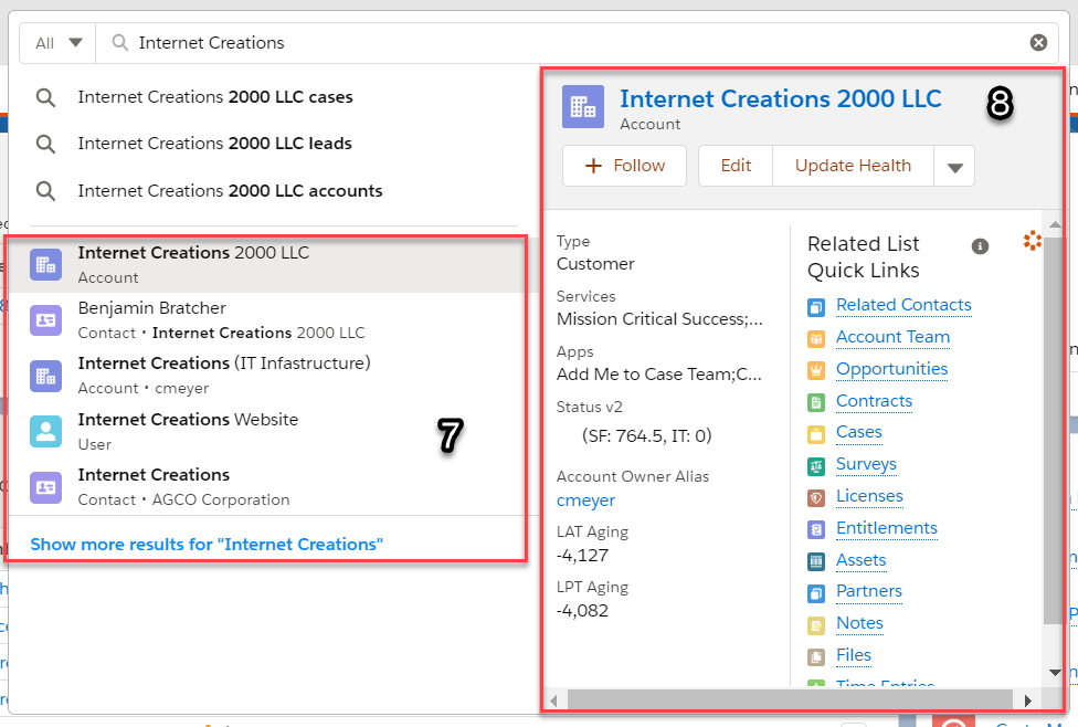 """Screenshot showing Einstein Search with the keyword """"Internet Creations"""" typed into the global search."""