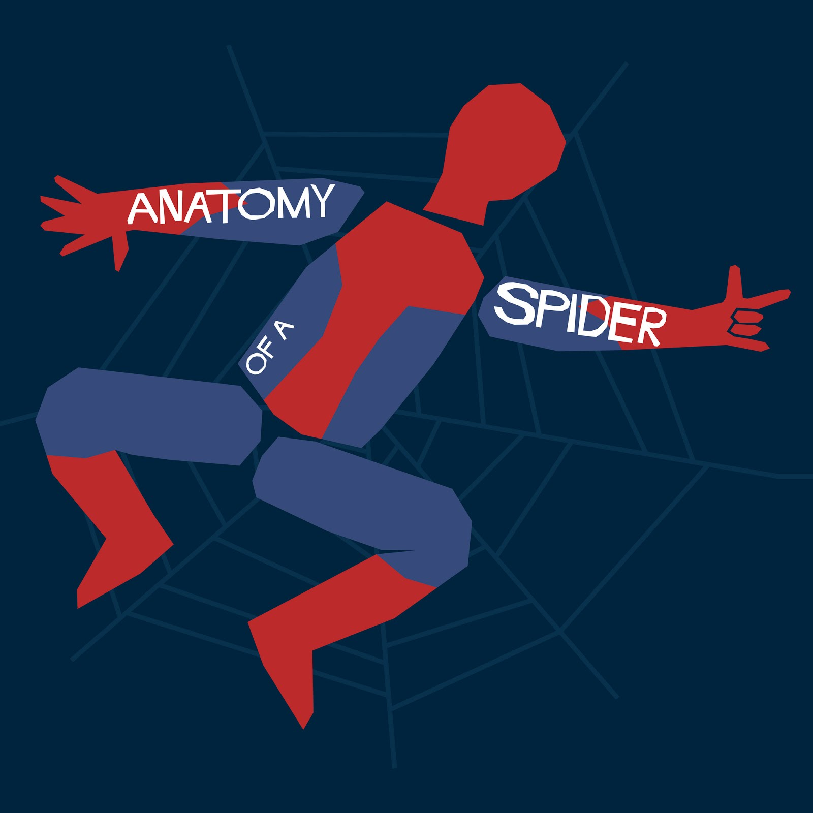spider_anatomy.jpg