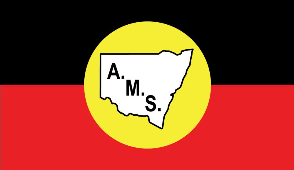 Aboriginal Medical Service Redfern.png