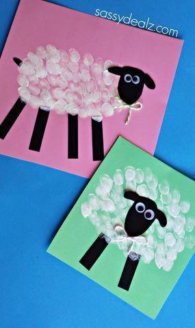 Dibujar oveja. Proyecto escolar animales de la granja. Texturas animales
