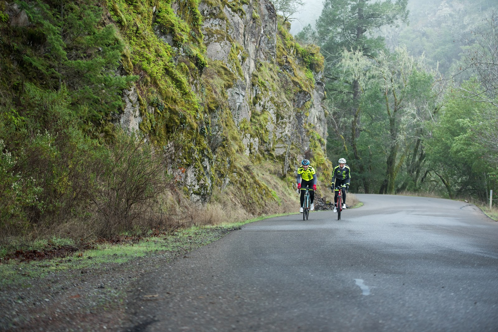 Climbing Pine Flat Road by bike - cyclist on road