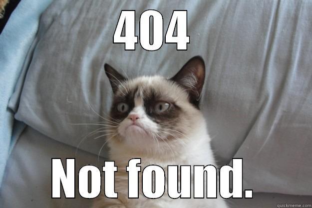 404 meme