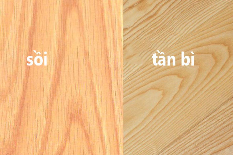 Vân gỗ và màu sắc của gỗ tần bì và gỗ sồi