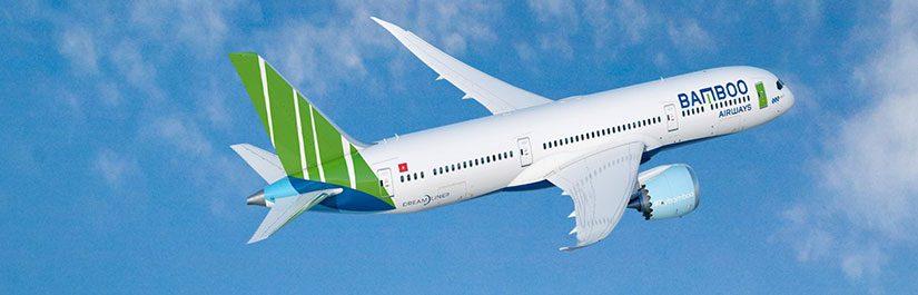 Máy bay Baboo Airways được thiết kế tinh tế hài hòa