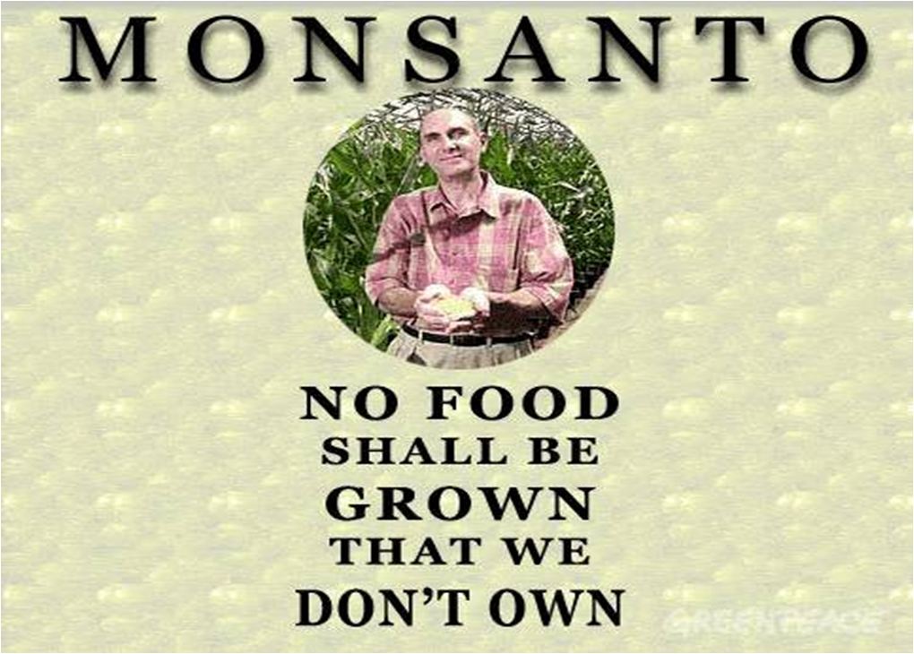 monsanto better living through genetic engineering 5 surprising genetically modified foods  where as genetic engineering involves the addition of foreign genes that would not occur in nature  and eat on the cob—was gmo-free until last .