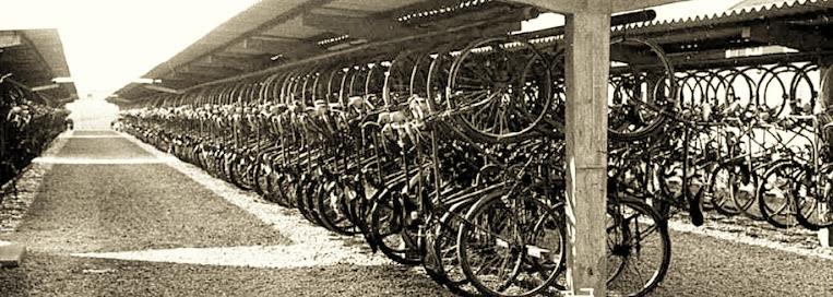 Vías para ciclistas ¿Realidad o ficción?