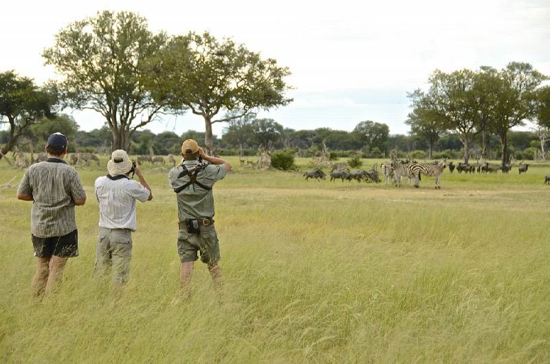 63 - Imvelo Safari Lodges - Camelthorn Lodge - The plains are great walking country.jpg
