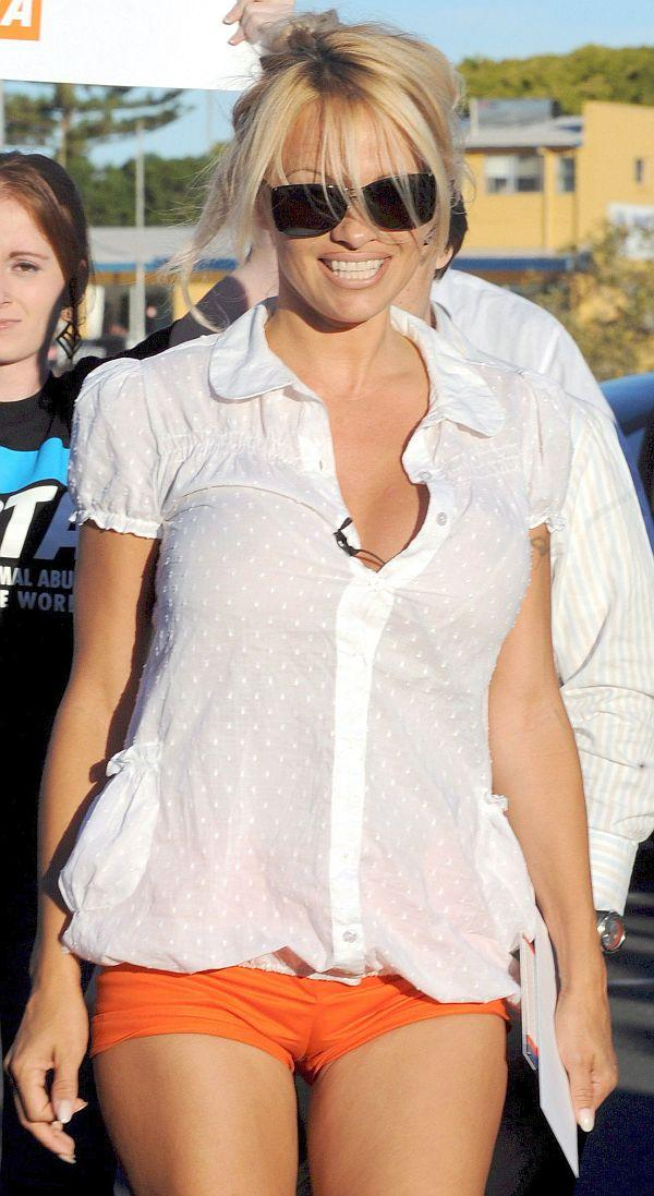 Pamela Anderson Camel Toe