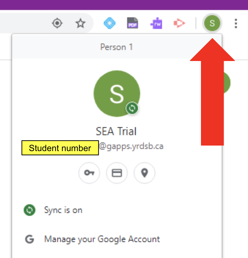 Arrow is pointing at the Google account icon in extension toolbar. In the pop-up the student number before @gapps.yrdsb.ca is highlighted.