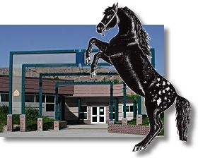 school_horse.JPG