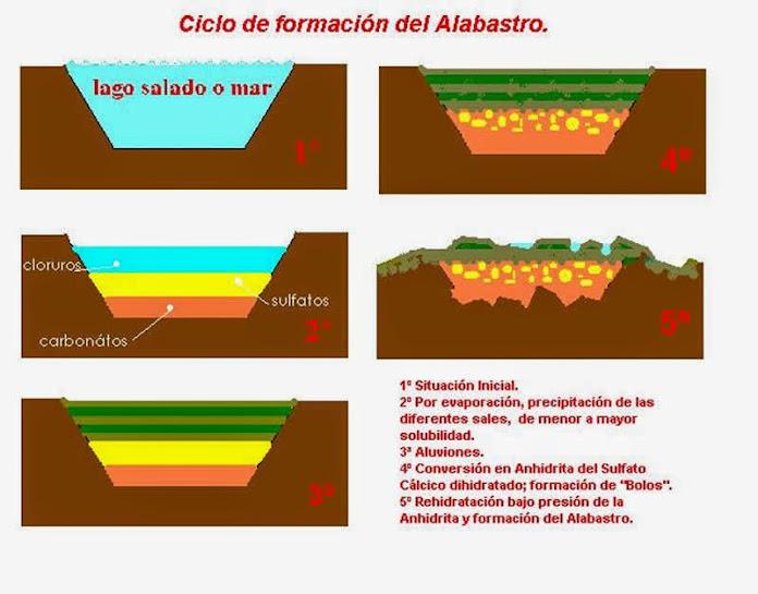 Ciclo formativo del Alabastro