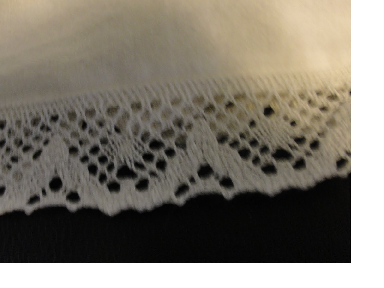 Bloomer lace 1.jpg