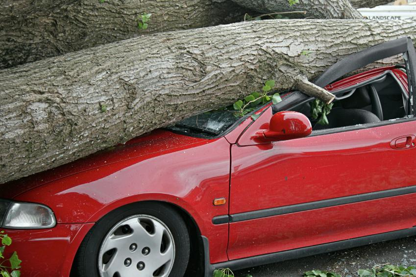 Image result for collision and comprehensive for old car