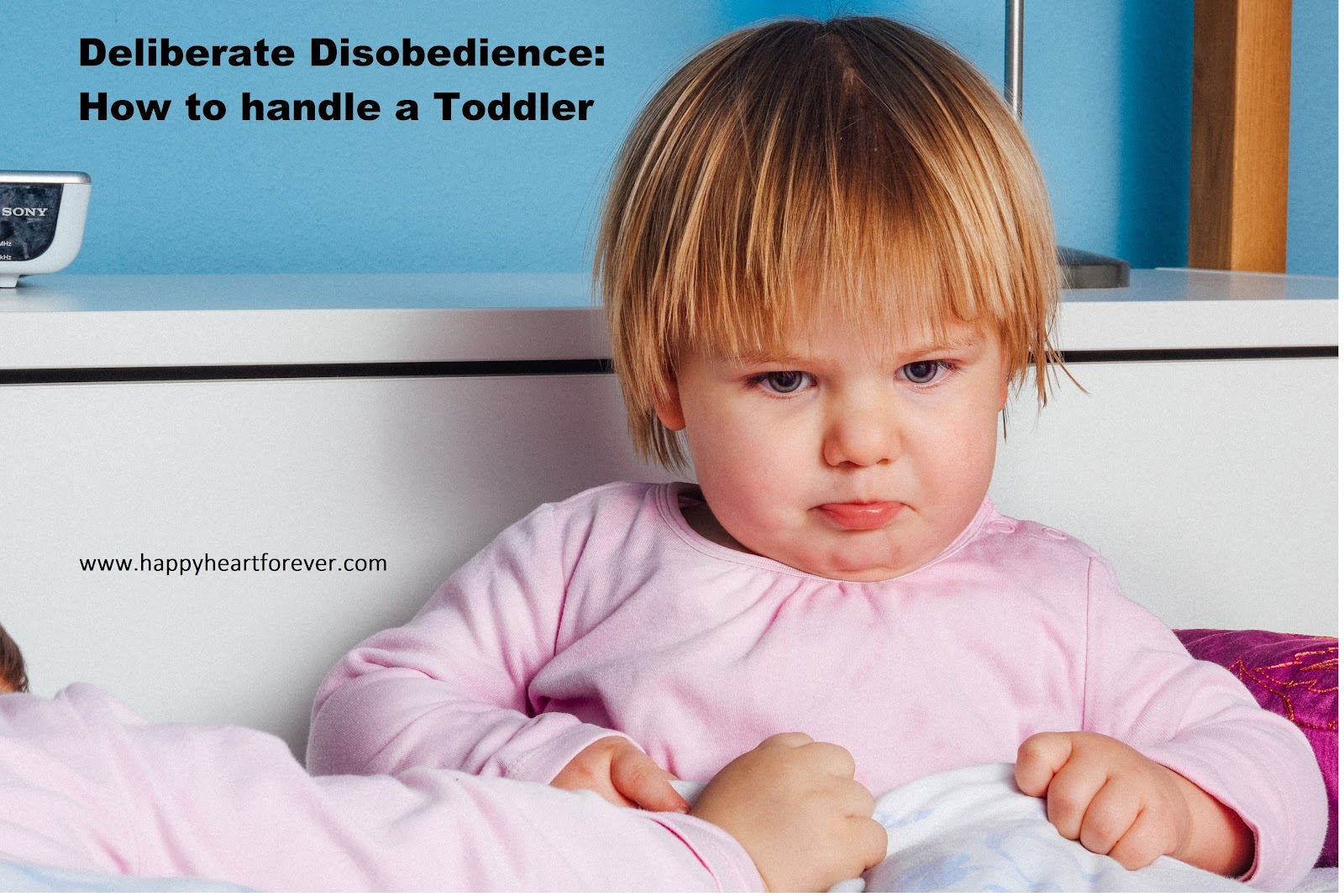 Here are some tips which commonly work and are helpful when toddlers are acting deliberately disobedient.