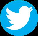 Download Twitter Logo Png Transparent Background - Logo Twitter Png PNG  Image with No Background - PNGkey.com