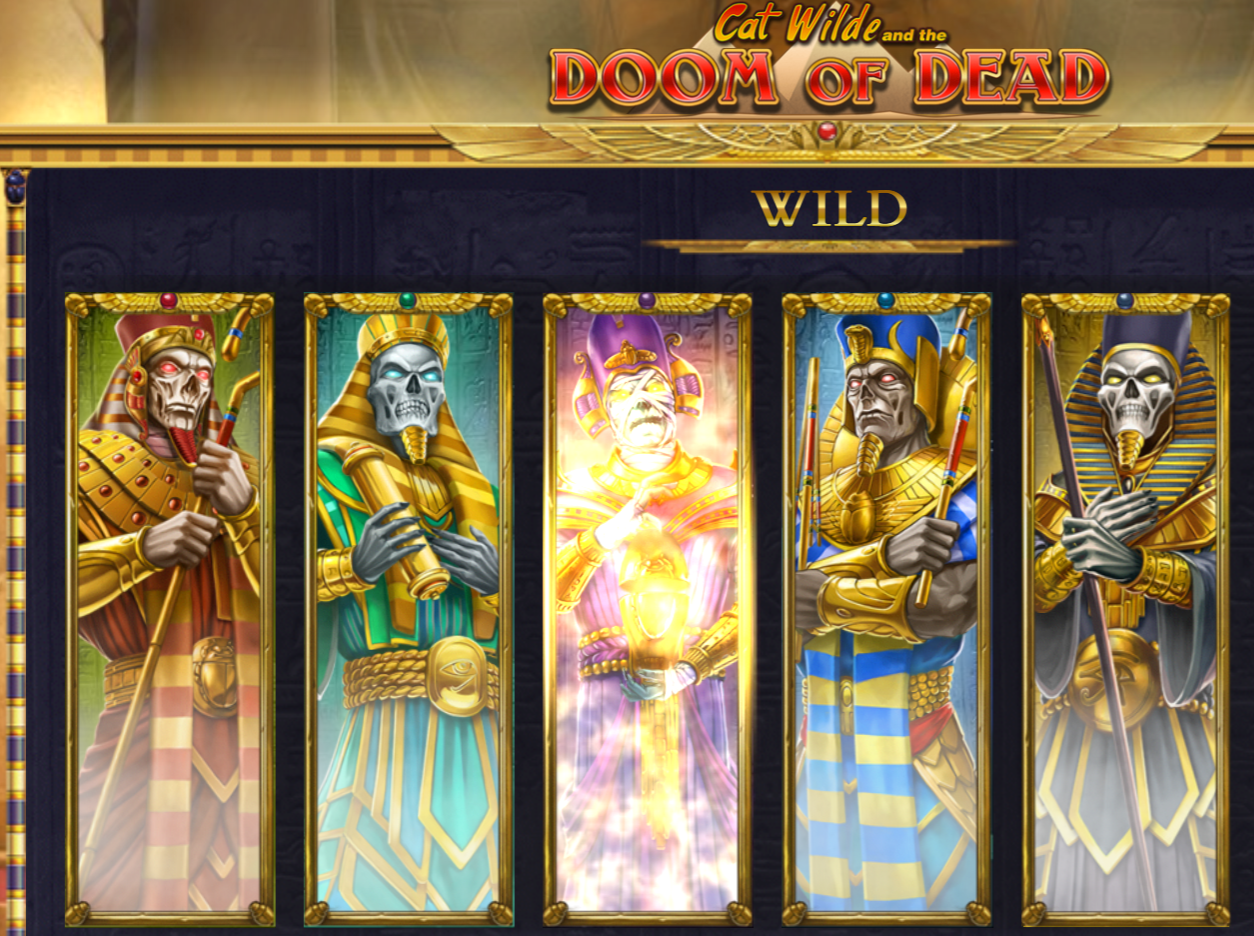 Cat Wilde And The Doom Of Dead is a video slot that you can play at the top online casinos