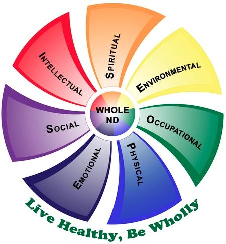 health and wellness quiz pdf