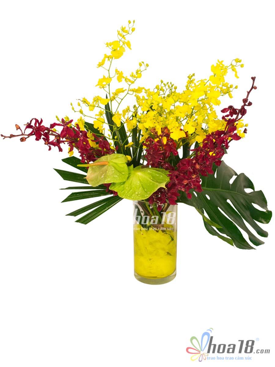bình hoa lan