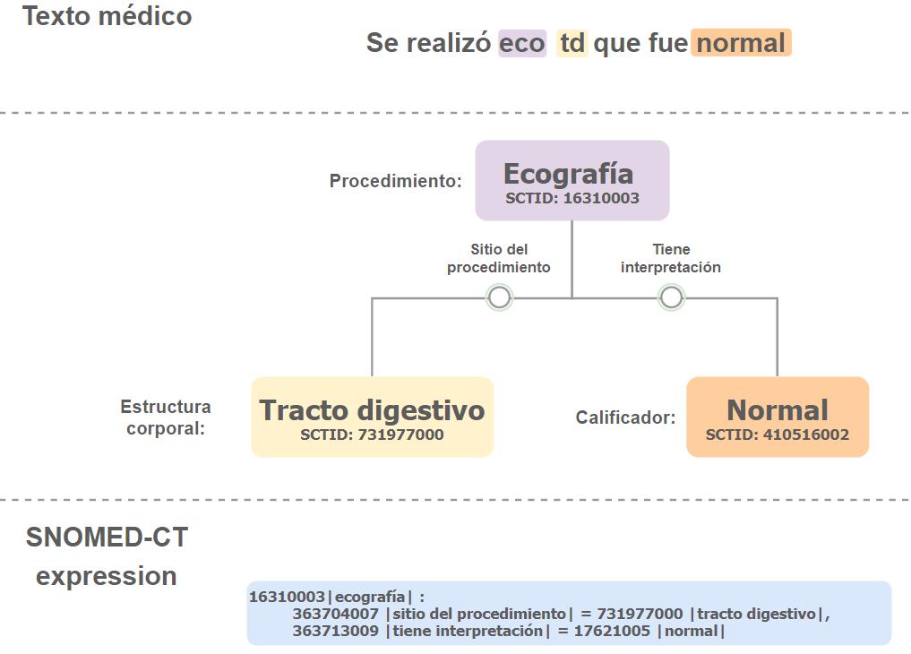 Ejemplo del procesamiento de un texto que especifica sitio e interpretación de un procedimiento.
