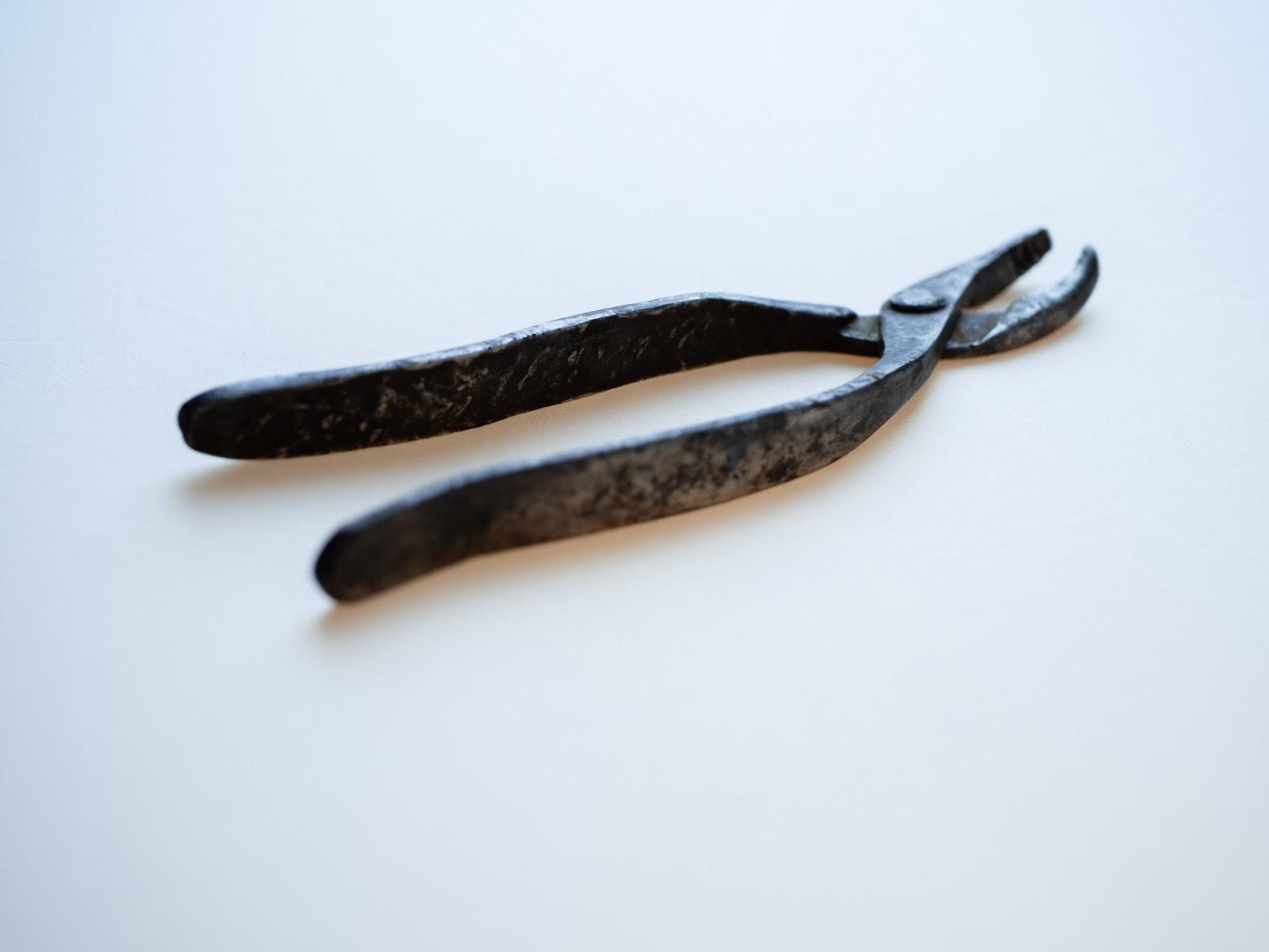 Кліщі, які дісталися Василині від тата – зубного техніка
