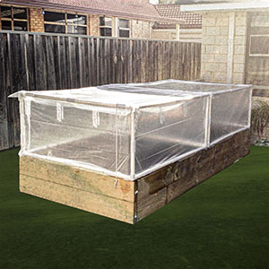 A cold frame built from PVC fittings and PVC pipe covered with greenhouse plastic protecting the garden on a raised garden bed