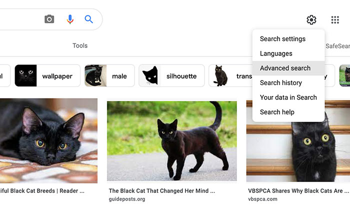 How to Use Google Advanced Image Search - Select Advanced Options from Menu