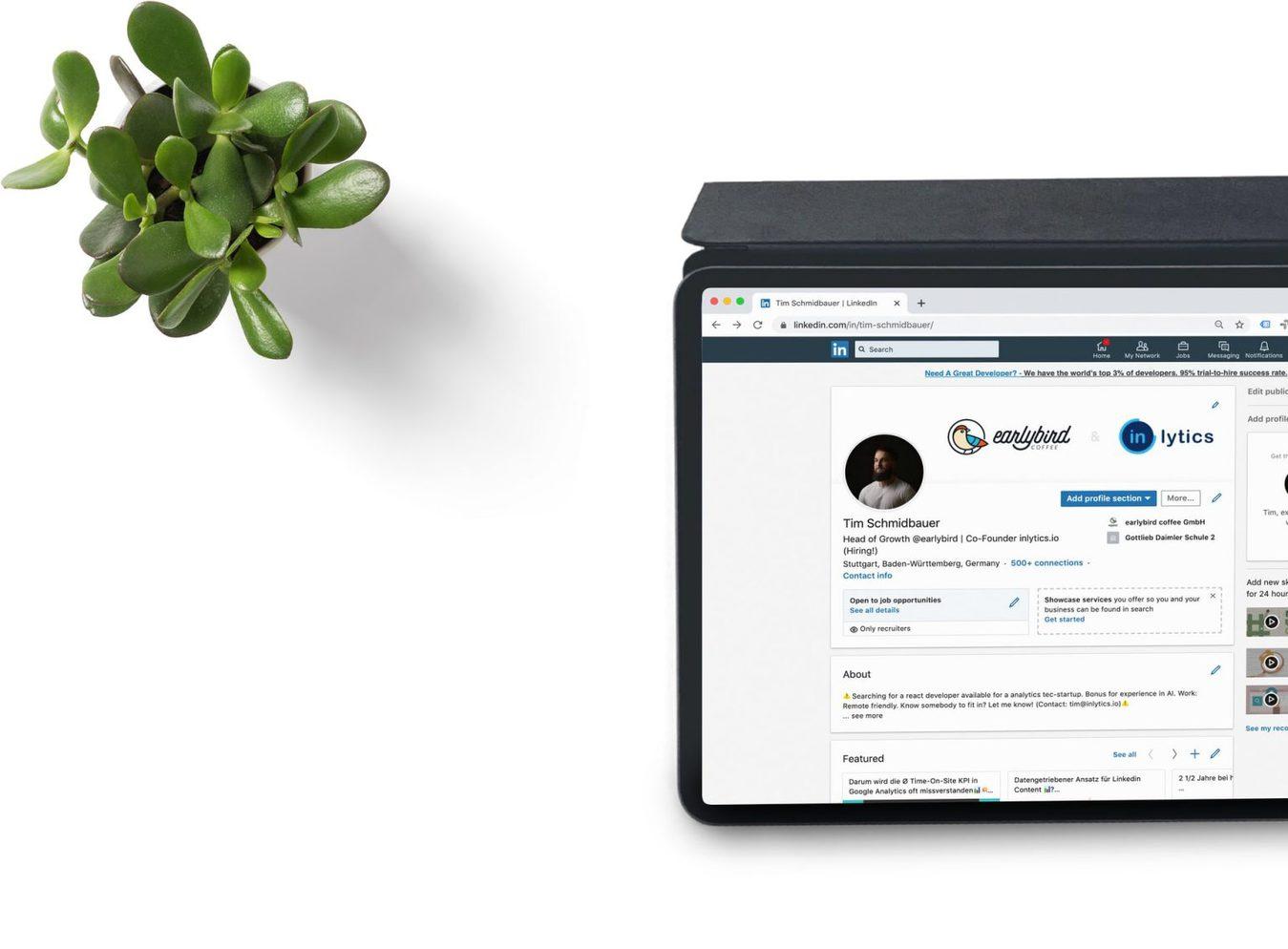 Strona LinkedIn wyświetlana na tablecie, który leży na białym stole koło rośliny