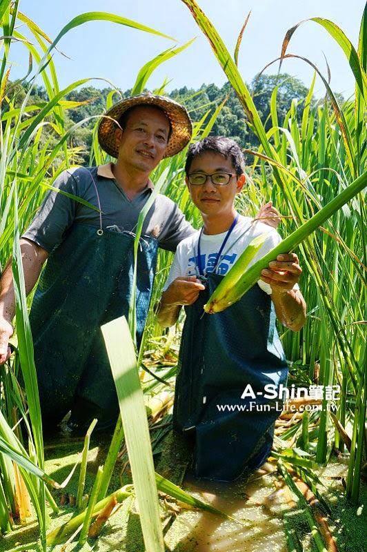 桃米休閒農業區21